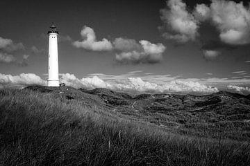 Leuchtturm mit Landschaft in Dänemark von Evelien Oerlemans
