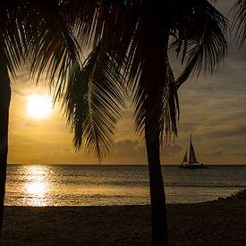 Eagle beach Aruba Sunset van Giovanni della Primavera