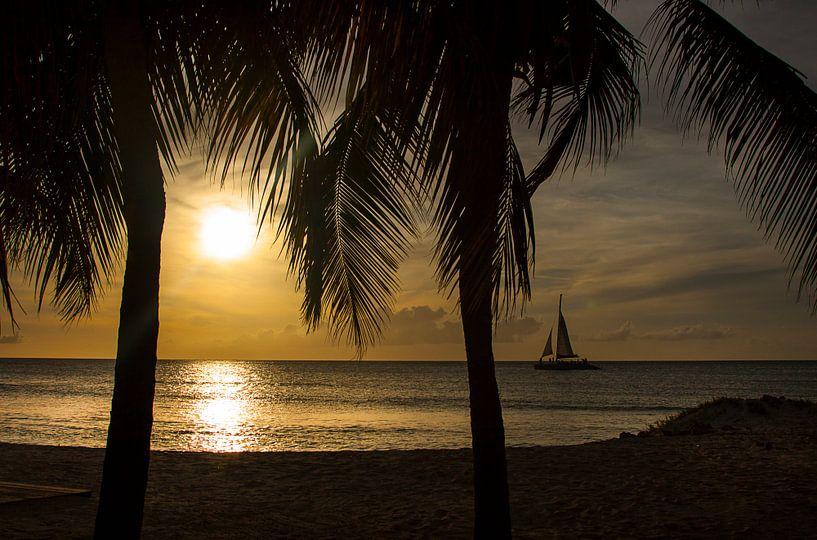 Eagle beach Aruba Sunset sur Giovanni della Primavera