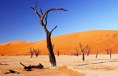 Dead Vlei Namibia