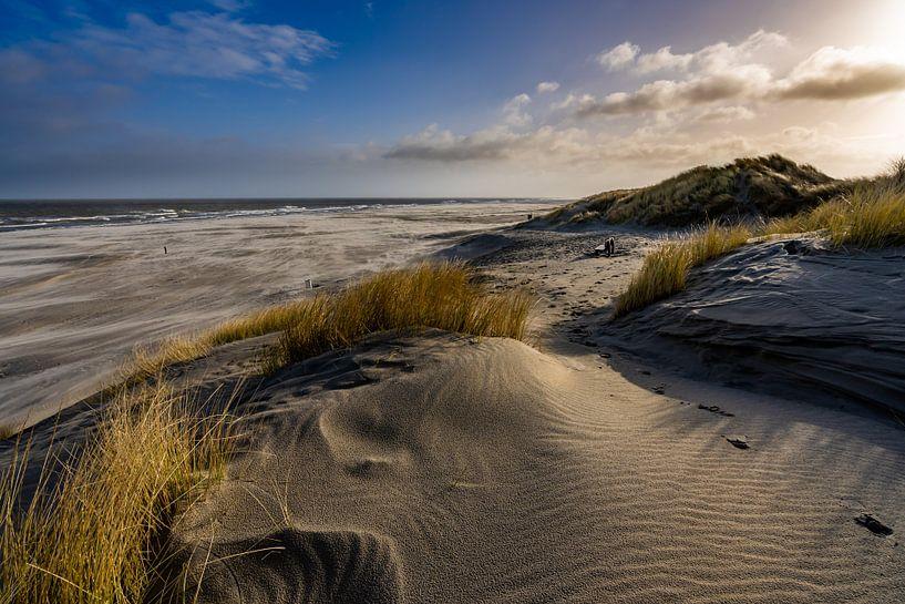 Strand van Ameland vlak na zonsopkomst met prachtig zacht goud geel licht van Dafne Vos
