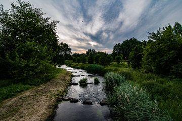 beek door een groen landschap van Niels Aben