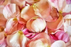 Bloemblaadjes van Claudia Moeckel