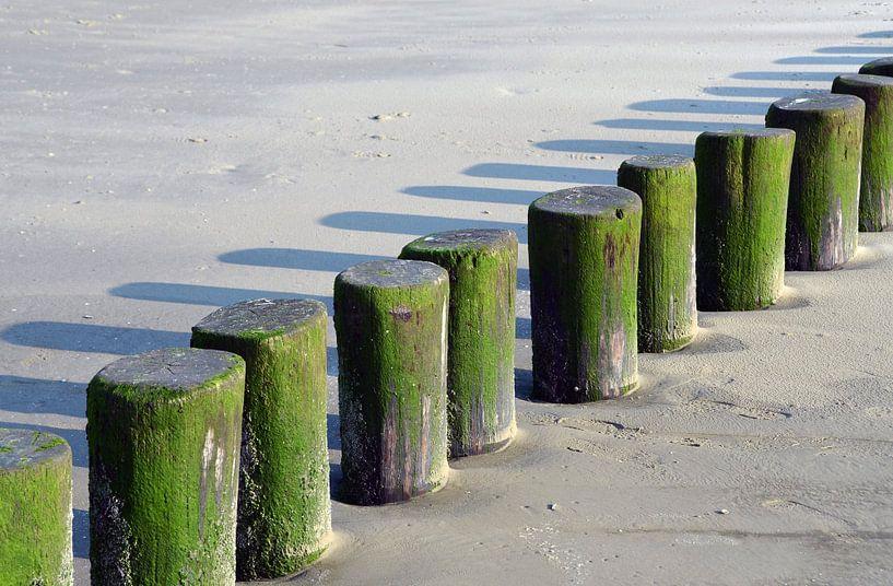 Groene paaltjes aan zee Ameland van Nora Verhoef