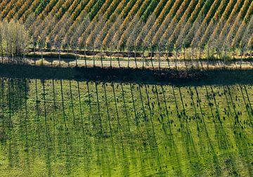 Un verger aux couleurs de l'automne sur Sky Pictures Fotografie