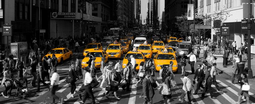 a day in New York City van Petra Vermunt