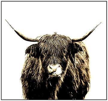 Highlander 3 van Marc Lourens