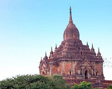 De Sulamani Tempel is een boeddhistische tempel in het dorpje  Minnanthu (zuidwesten van Bagan) in M van Nisangha Masselink