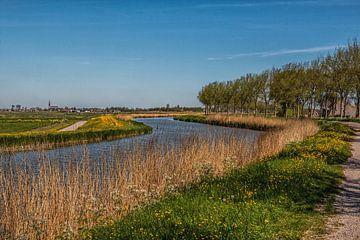 Polderlandschap van Annette van Dijk-Leek