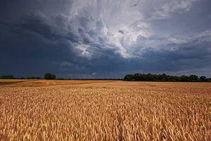 Threat of storm van Malte Pott