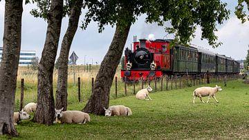 Le train à vapeur qui passe sur Fotografie in Zeeland