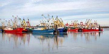 Kleurrijke schepen in de haven van Lauwersoog.