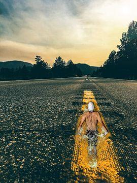 Ein langer Weg ins Leben von Nienke Den Daas