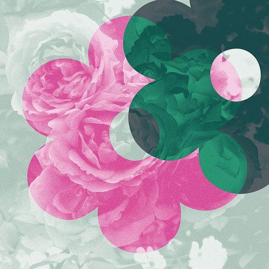 Liefde van de bloemenrozen: roze, mint en diepgroen