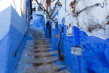 Blau getönte Treppe in der Altstadt von Chefchaouen, Marokko. Afrika von Tjeerd Kruse