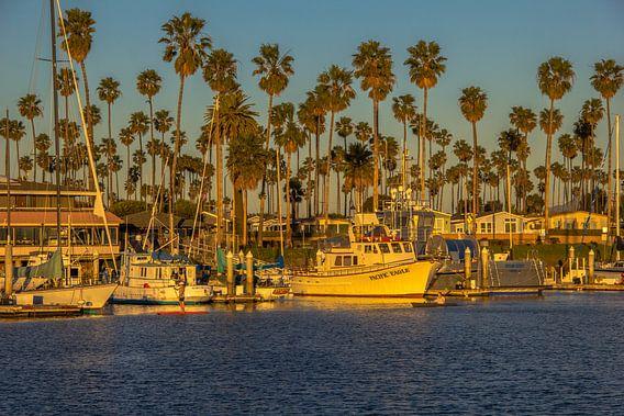 Ventura harbour van Bas Koster