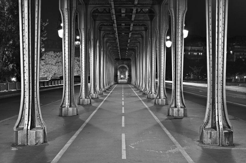 Pont de Bir-Hakeim, Parijs van Nico Geerlings