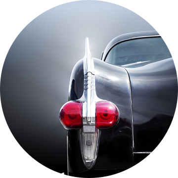 Amerikaanse klassieker 1954 cavalier van Beate Gube