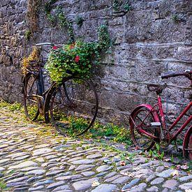 Twee roestige fietsen in een steegje in Durbuy van Evert Jan Luchies