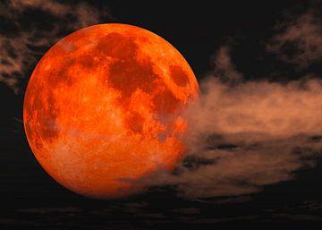 Blutmond - totale Mondfinsternis von Max Steinwald