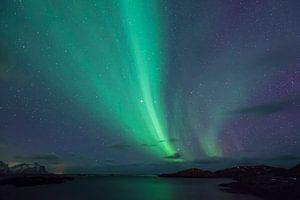 Noorderlicht boven de Lofoten
