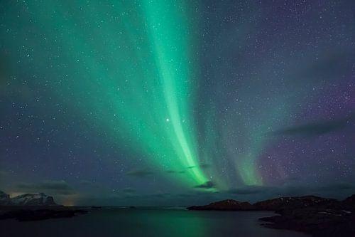 Noorderlicht boven de Lofoten van Karla Leeftink