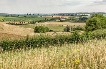 Zomer in Zuid-Limburg von John Kreukniet