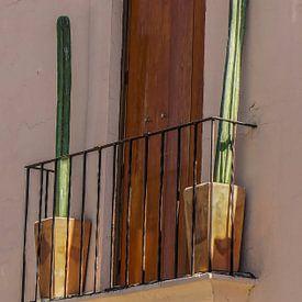 Het is groen en het steekt van Joris Pannemans - Loris Photography