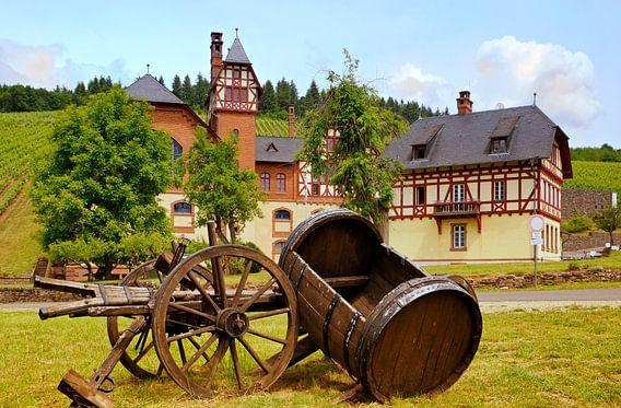 Avelsbach-wijnbouwgebied in Trier