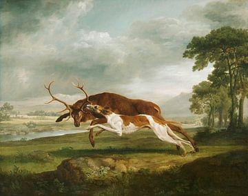 Jagdhund beim Coursing eines Hirsches, George Stubbs