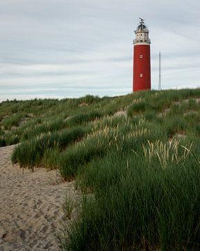 Uitzicht op de vuurtoren van Texel vanaf het strand van OCEANVOLTA