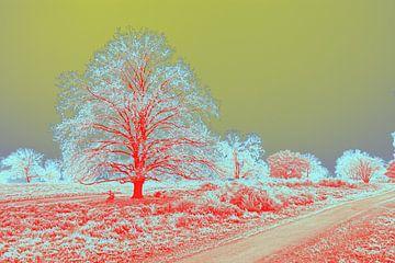 eigentijds kleurrijk beeld van een boom in landschap van Herman Kremer