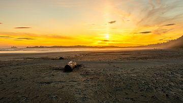 Zonsondergang bij Pacific Rim Vancouver Eiland van