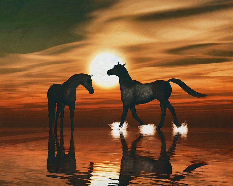 Paarden in de zonsondergang aan zee van Jan Keteleer