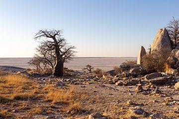 Afrika-Panorama von Arthur Mourits