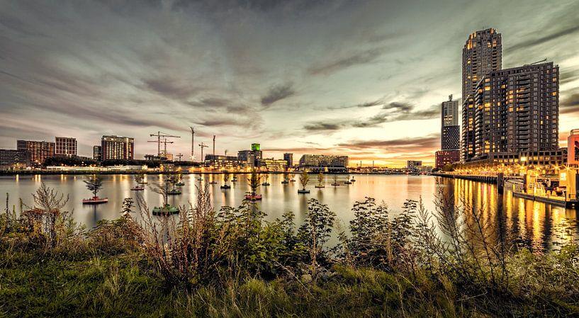 Wilhelminahaven Rotterdam van Rob van der Teen