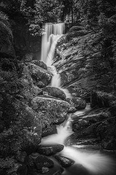 De watervallen van Triberg in zwart-wit