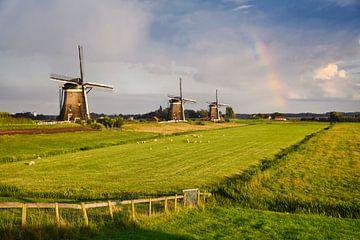 Drie molens in een weiland met een regenboog