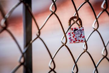 Enkelvoudig liefdesslot vergrendeld aan een met harten bedekt draadhek en een cartoonpaar in elkaars van Urban Photo Lab