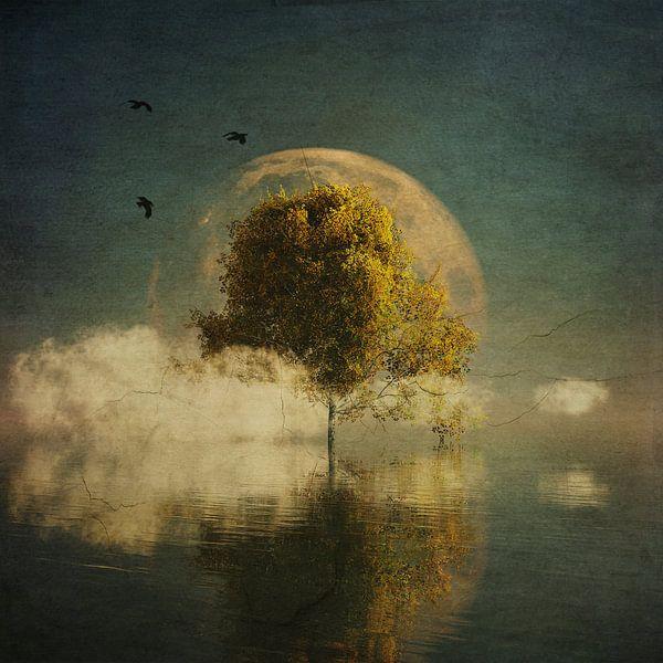 Droomlandschap – Surrealistisch landschap met gele berk en volle maan van Jan Keteleer