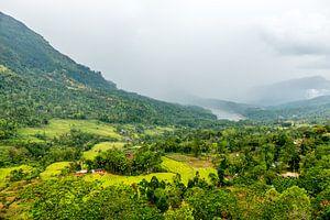 Hoe groen kan een landschap in Sri Lanka zijn?