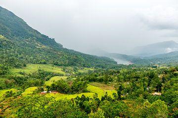 Hoe groen kan een landschap in Sri Lanka zijn? van Hein Fleuren