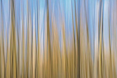 abstracte beweging in blauw en bruin