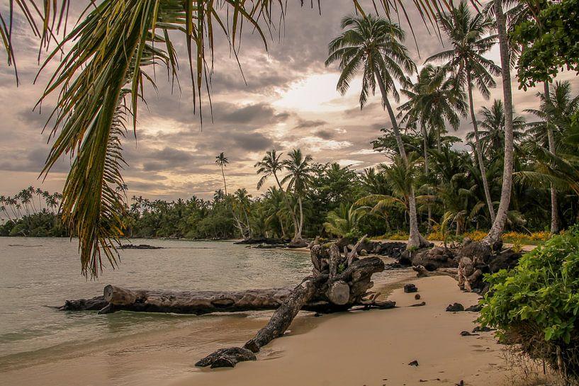 Verlaten Strand op Samoa van Hans Moerkens