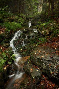 Fairytale waterfall van Roelie Steinmann