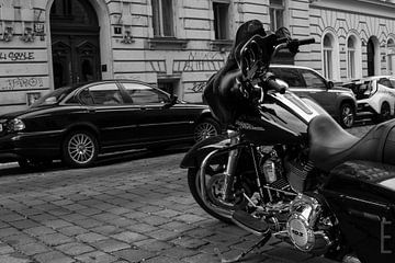 Harley sur Erol Kip