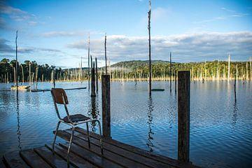 Calme au lac de Brokopondo
