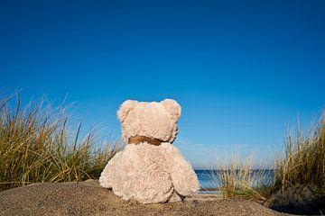 verdrietige teddybeer met reislust op het strand van Warnemünde van Heiko Kueverling