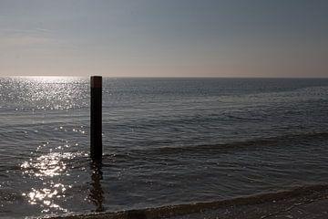 Zee van Fons Simons