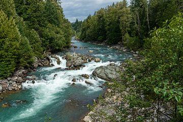 Stroomversnellingen bij Chance Creek in Canada van Hans-Heinrich Runge